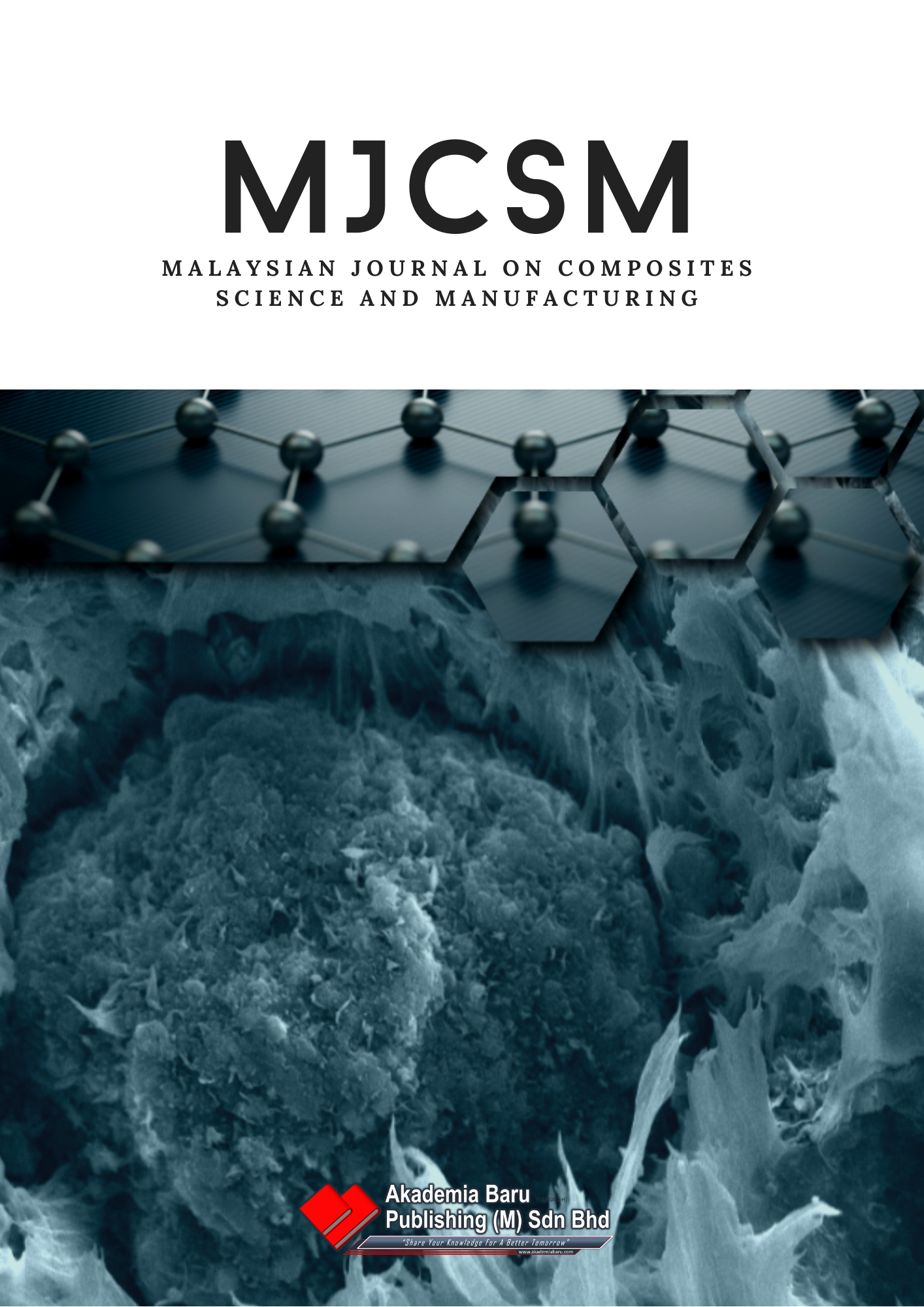 MJCSM cover page
